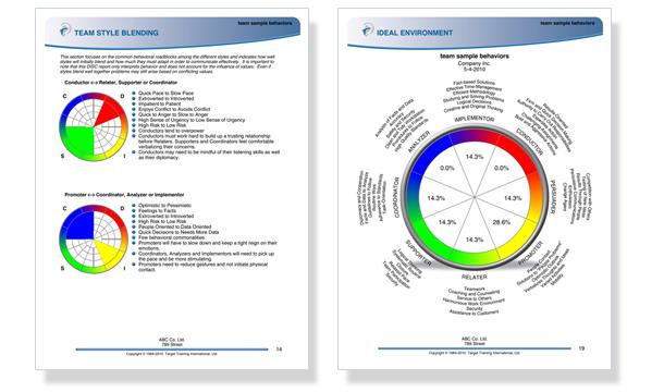 DISC team profile