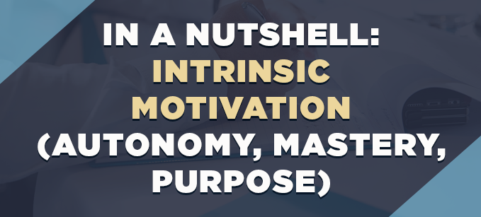 In_a_Nutshell-_Intrinsic_Motivation.png