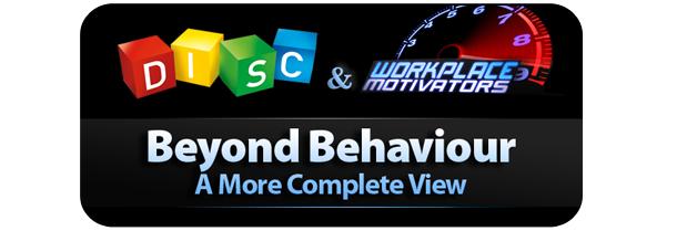 disc_profile_and_motivators.png