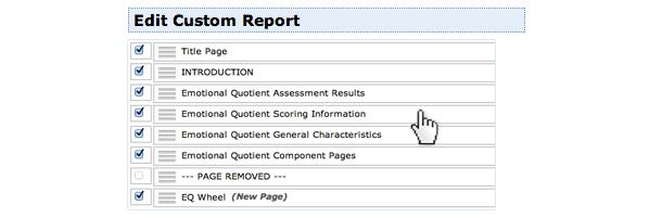 eq_custom_report.png