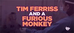 Tim Ferriss & A Furious Monkey Reveal the Most Important Lesson on Emotional Intelligence | Emotional Intelligence