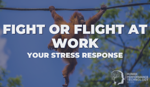 Fight or Flight at Work: Your Stress Response