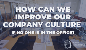 How Can We Improve our Company Culture | Profiling & Assessment Tools